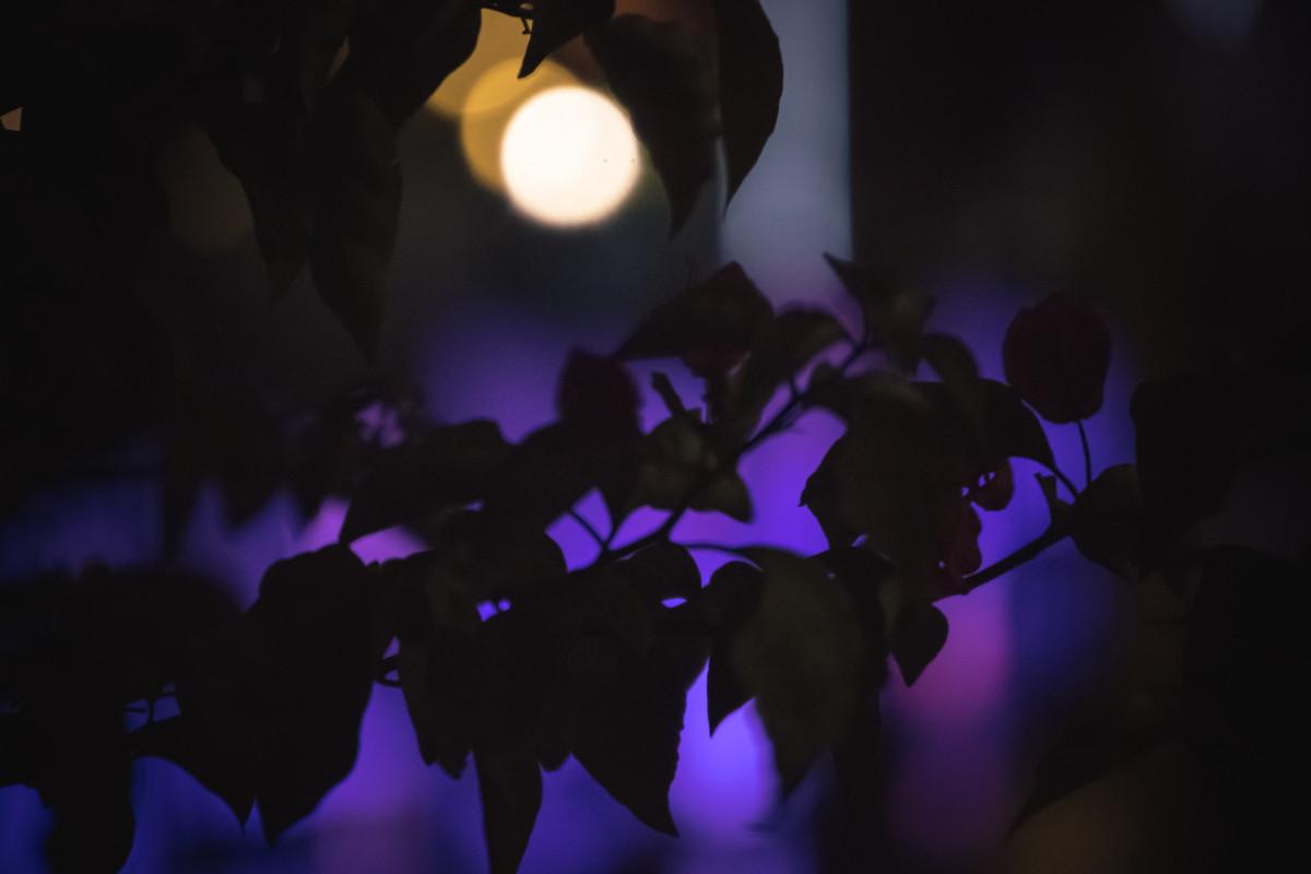 Nočný Hong Kong Tsim Sha Tsui
