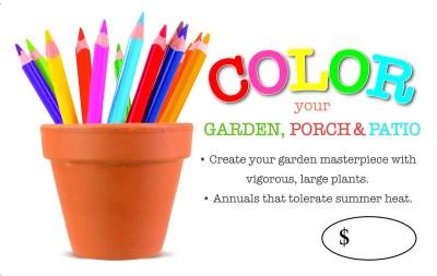 Color Your Garden