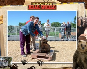 Emily at Yellowstone Bear World