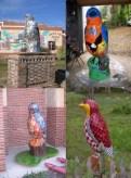 Birds-I-View Birds in Hyattsville
