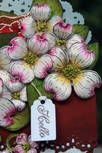 dogwood flower pot card close up view