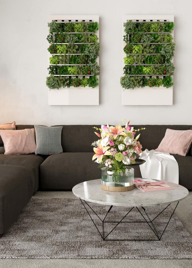 Smart home indoor garden on your wall