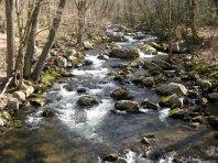 Virginia stream in Giles County.