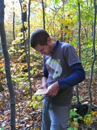 Cody coloring soils.