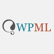 - logosquare-wpml-mini 1