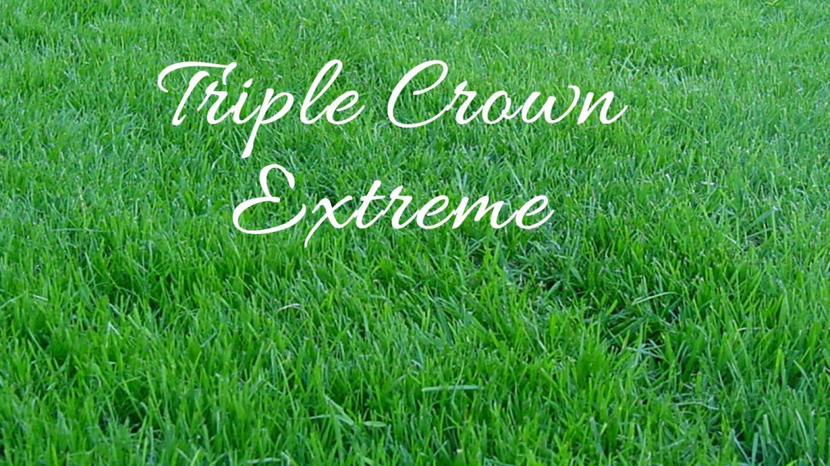 Triple Crown Extreme Turf