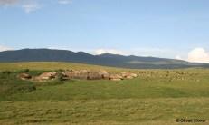 Massai-Dorf auf dem Kraterrand
