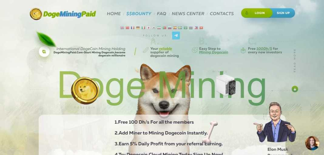 Dogeminingpaid Hyip Review : It Is Scam Or Paying? Read Our Review