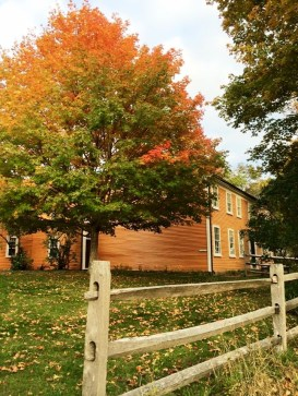 The glint of red leaves means it's autumn at Cogswell's Grant.