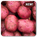 Red-Chieftan-Potatoes-New