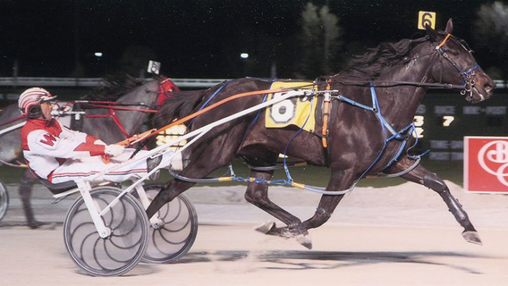 Excelerated Speed winning a race at Balmoral Park on May 2, 2014