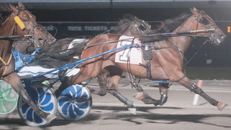 Green Peace winning a race at The Meadows on June 13, 2012.  Trained by Ernie Danks Jr. and owned by Ernie Danks Jr. and Ivar Hyngstrom