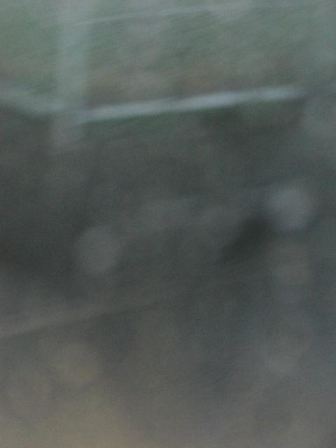 100324aa3.jpg
