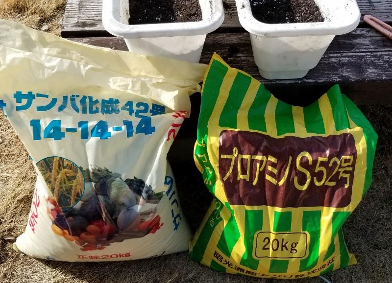 Strawberry-seedlings_20190213_102850 (800x578)