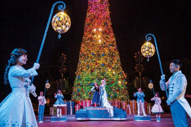Frozen Christmas Tree Lighting Ceremony(2)