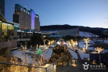 High 1 Resort 3