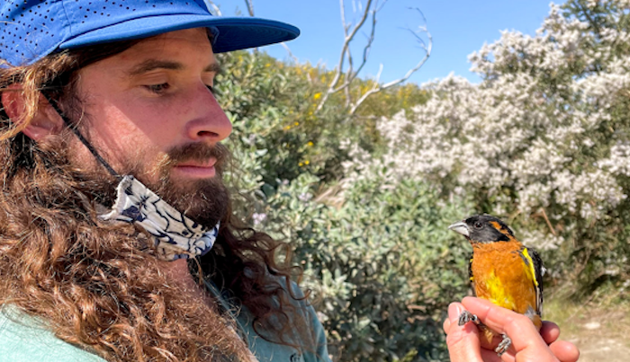 The Worble's Dave Mull Profiled By Audubon Society Magazine