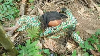 Suspected ritualists behead security guard ,remove vital organs