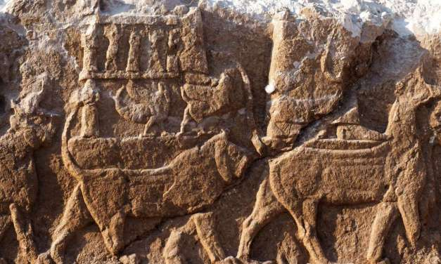 Extremely rare Assyrian carvings discovered in Iraq