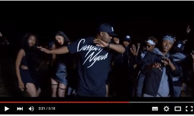 Watch The Brand New Nasty C 'Juice Back Remix' Music Vid nasty