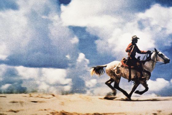 Prince-Cowboy