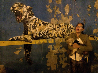 Pets love Banksy, too.