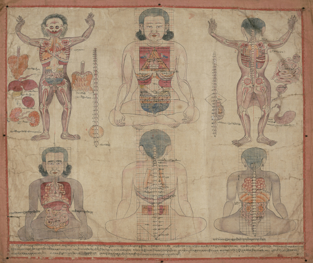 Localization of Viscera in the Torso Tibet or Mongolia; 18th or 19th century Pigments on cloth and brocade Pritzker Collection
