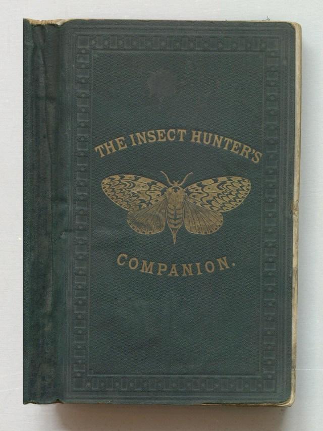 """Joseph Greene, """"The Insect Hunter's Companion"""" (1870) (via Thomas Fisher Rare Book Library)"""