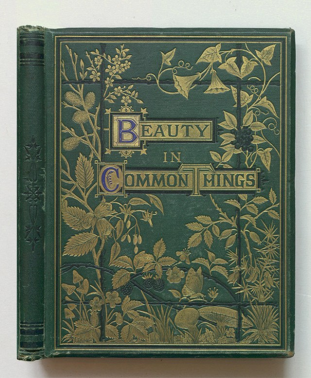 """A. C. Chambers, """"Beauty in Common Things"""" (1874) (via Thomas Fisher Rare Book Library)"""
