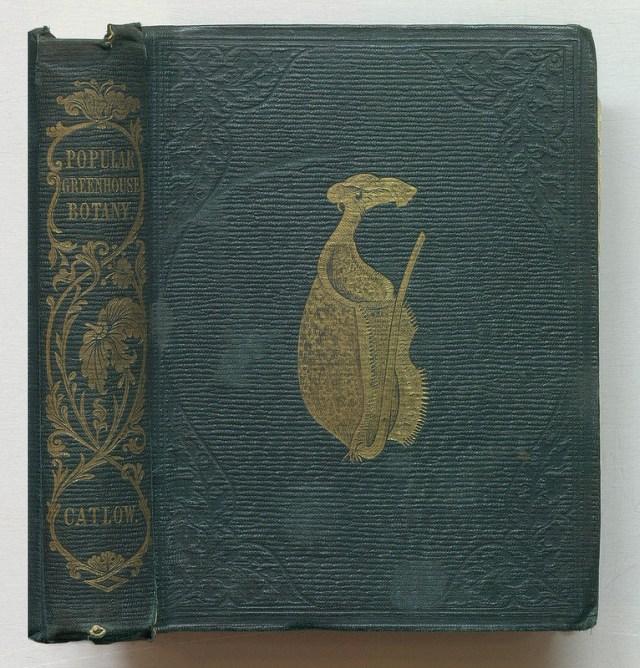 "Agnes Catlow, ""Popular Greenhouse Botany"" (1857) (via Thomas Fisher Rare Book Library)"