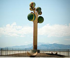 Photo of Metaphor: The Tree of Utah