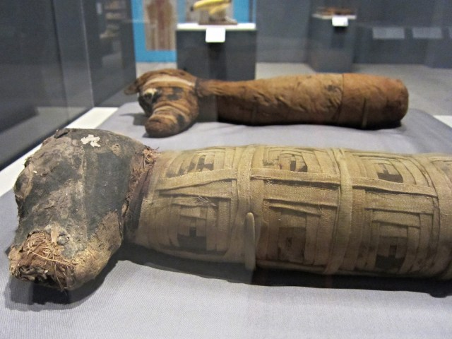 'Soulful Creatures: Animal Mummies in Ancient Egypt' at the Memphis Brooks Museum of Art