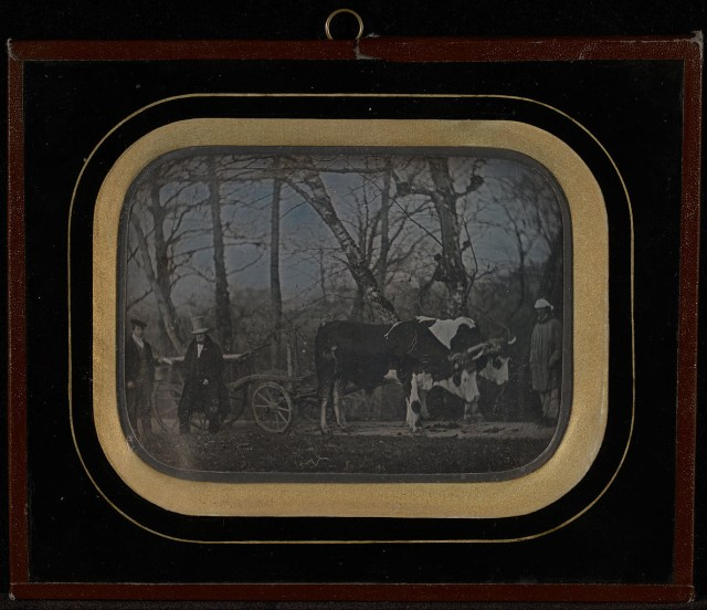 "Jean-Gabriel Eynard, ""Jean-Gabriel Eynard with two servants and an ox-drawn wagon"" (1850), daguerreotype (J. Paul Getty Museum, via Wikimedia)"