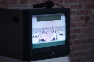 Araya Rasdjarmreanrnsook, The Class, 2005. Single channel video, color, sound.
