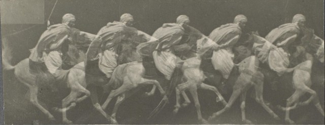 """Arab Horse Gallup"" (1887), gelatin silver print photographed by Étienne-Jules Marey (via Museum of Fine Arts, Houston)"