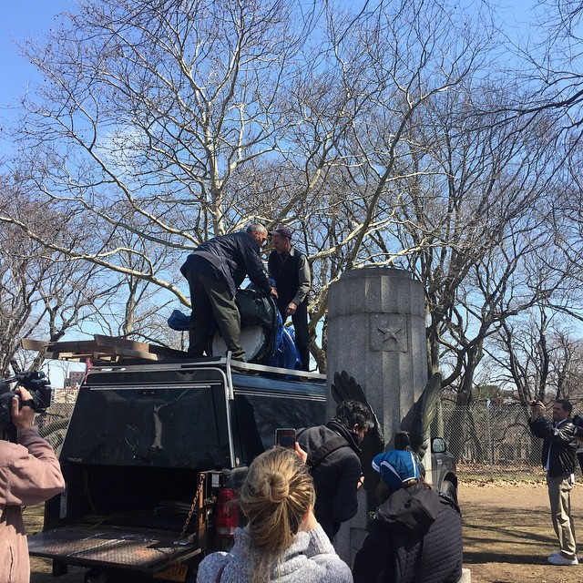 Employees of the New York City Parks Department removing the Edward Snowden bust from its pedestal
