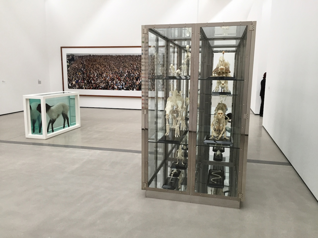 Damien Hirst and Andreas Gursky