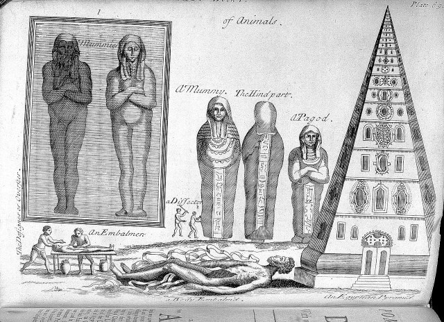 A 17th-century interpreation of the ancient Egyptian mummification process (from P. Pomet's 'A compleat history of druggs,' via Wellcome Trust)