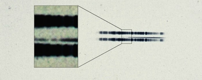 Photographic plate showing the spectrum of the star discovered by Adriaan van Maanen (1917) (courtesy Carnegie Institution for Science)