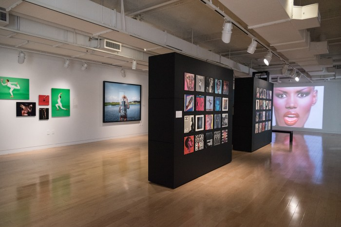 Installation view of 'The Grace Jones Project' at the Museum of the African Diaspora (courtesy the Museum of the African Diaspora)