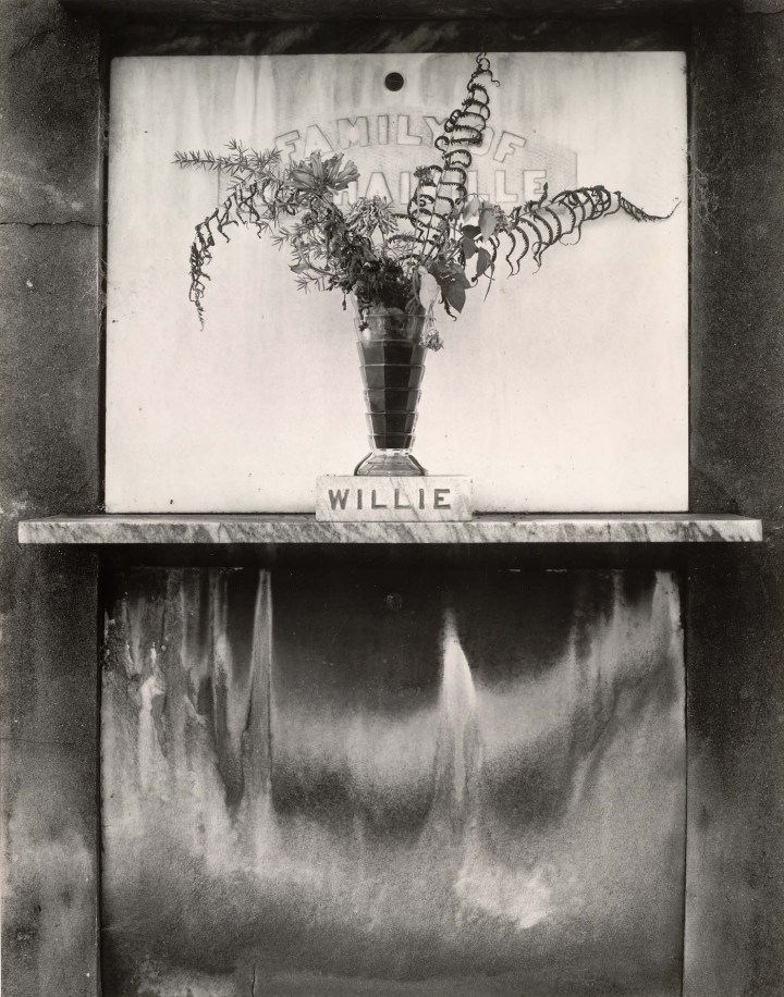Real American Places: Edward Weston & Leaves of Grass
