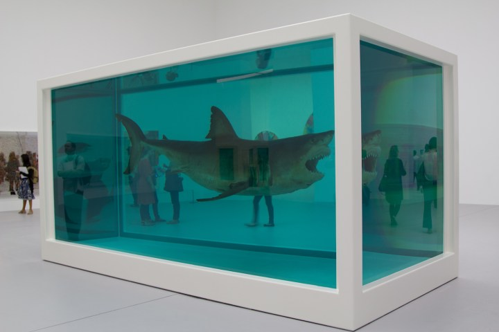 Shark work by Damien Hirst in Doha (photo by Gazanfarulla Khan/Flickr)