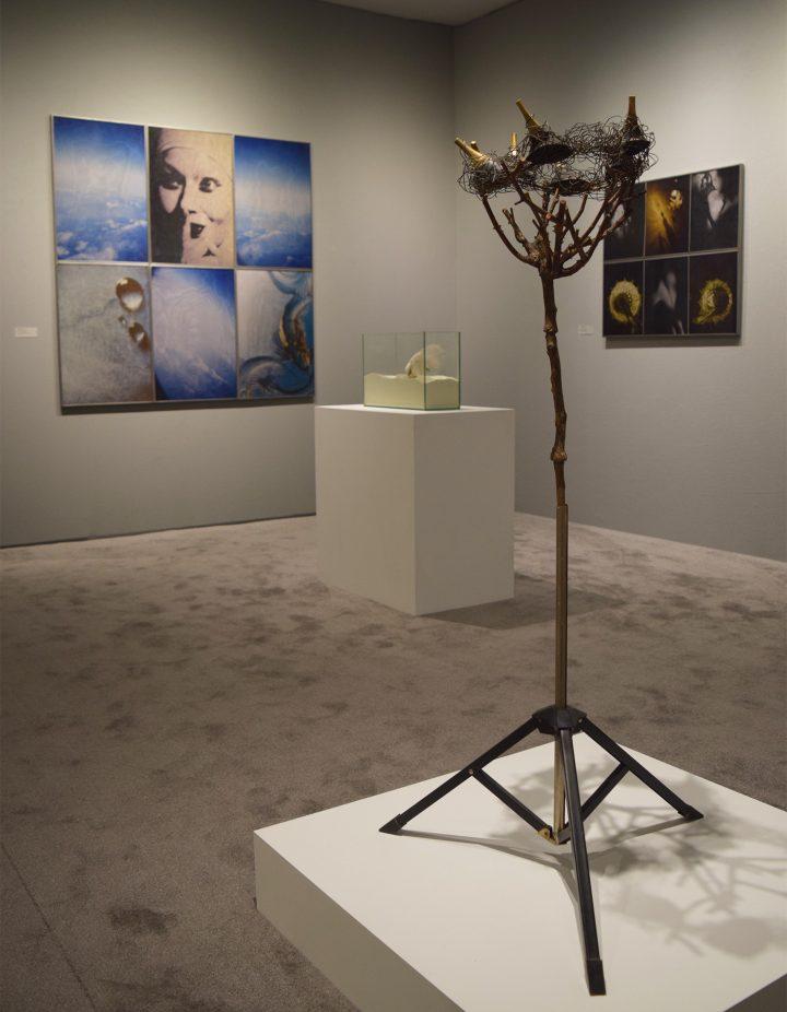 Works by Birgit Jürgenssen in the Fergus McCaffrey booth at the 2017 ADAA Art Show