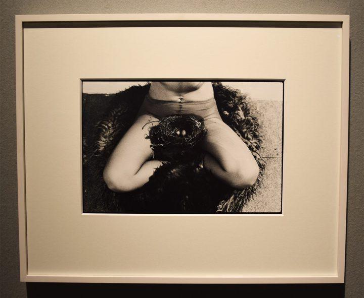 """Birgit Jürgenssen, """"Nest"""" (1979/2002), in the Fergus McCaffrey booth at the 2017 ADAA Art Show"""