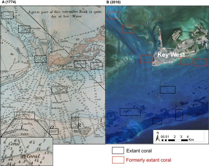 Example of nearshore coral loss near Key West, Florida, with an excerpt of a 1774 nautical chart with locations of coral in black rectangles, and the same area today on Google Earth, with black rectangles indicating areas of coral persistence, and gray for coral loss (courtesy Science Advances)