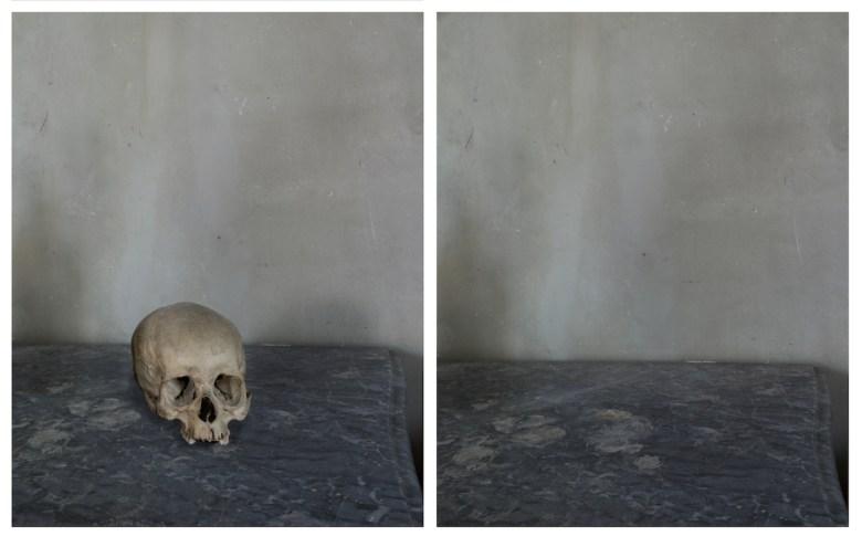 "Joel Meyerowitz, ""Skull"" (2011), from <em srcset="