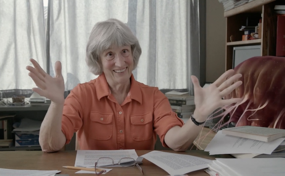 A scene from Donna Haraway: Story Telling for Earthly Survival (2016)