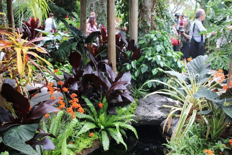 "Detail of the ""Hawai'ian Paradise Garden"" in the Enid A. Haupt Conservatory at the New York Botanical Garden"