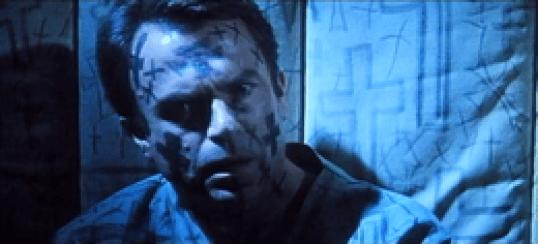 260px-Seme_della_follia_(film_1994)