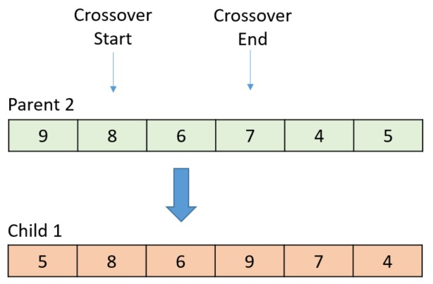When the swap is complete, the large arrow moves to the next gene to cross over.